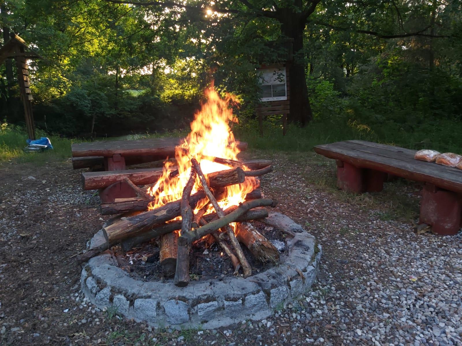 ognisko przygotowane do pieczenia kiełbasek